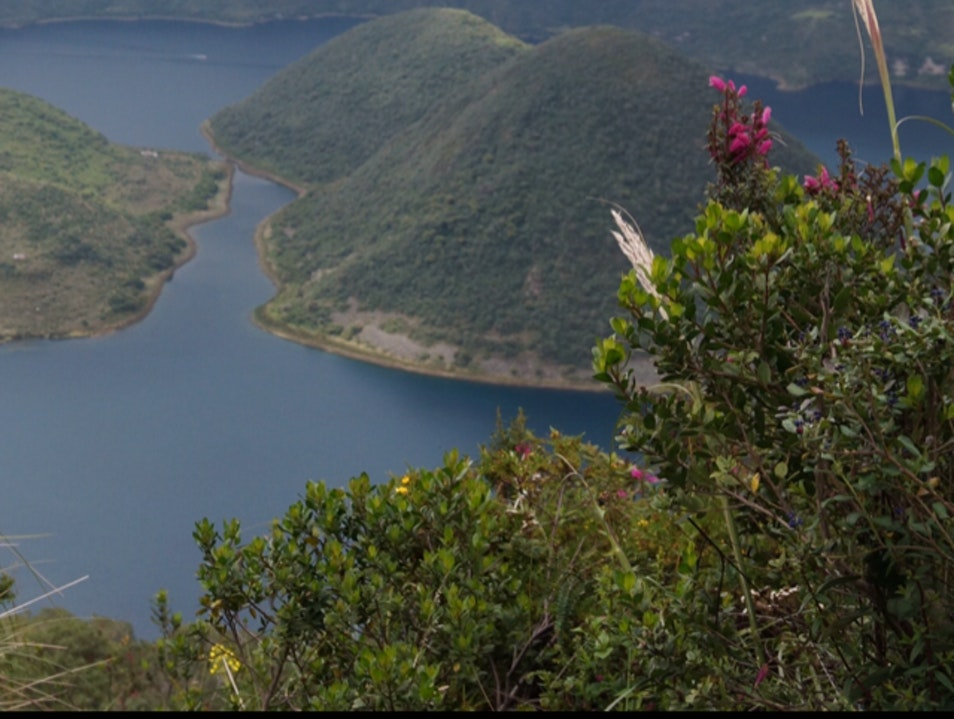 Witness Nature's Wonders, Big and Small Imbabura  Ecuador