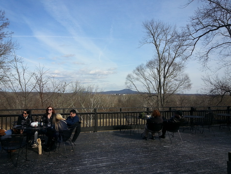 Tarara: A Virginia Winery Pioneer Leesburg Virginia United States