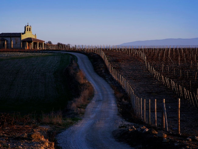 Get Behind the Scenes in a Spanish Winery
