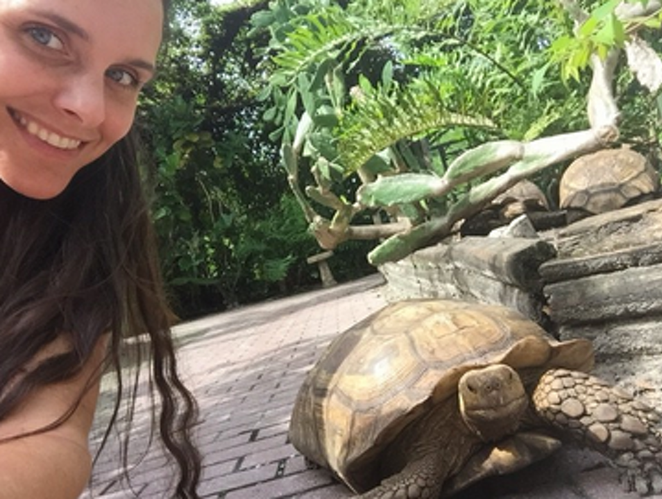 Hidden zoo like attraction in Southwest Florida