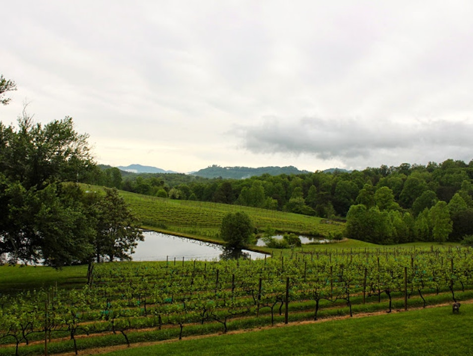 Family Winery in the Blue Ridge Mountains Young Harris Georgia United States