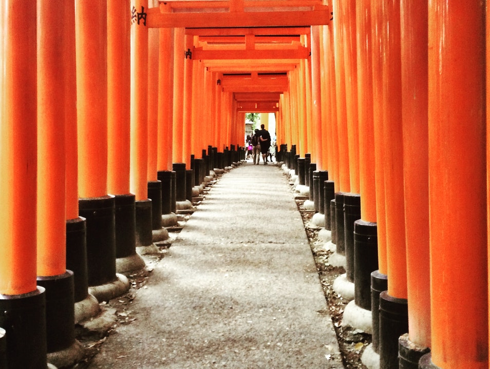 Hike to the Top of Inari Mountain Through Thousands of Torii Gates to the Inner Shrine Kyoto  Japan