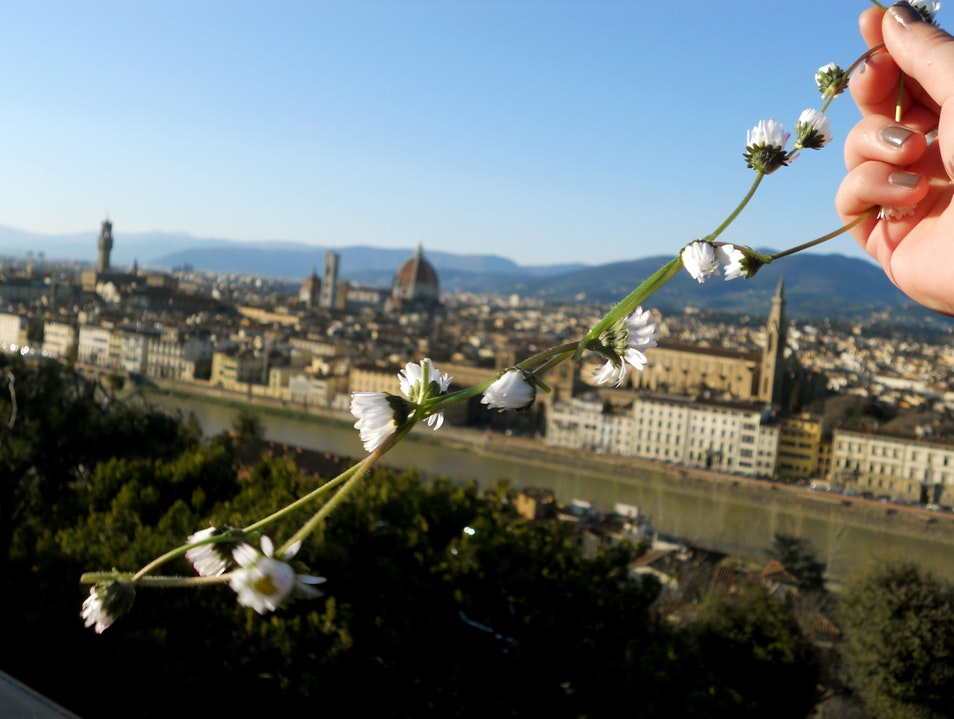 Better from Up High Florence  Italy