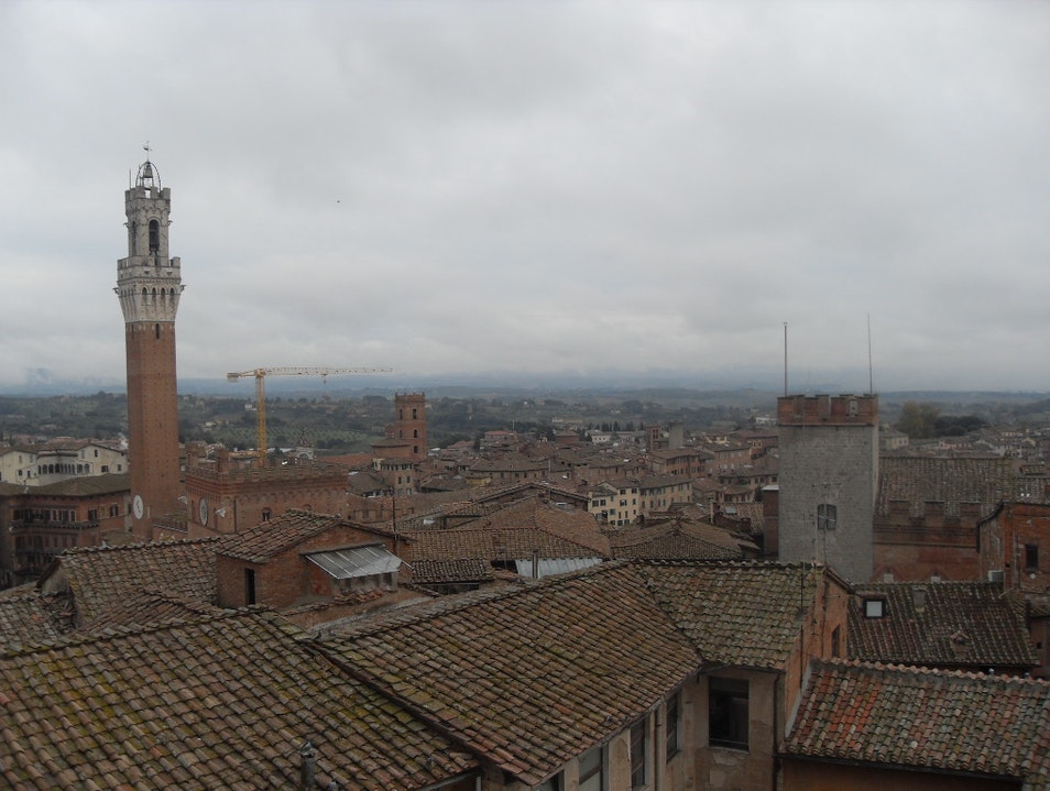 A View of a Tower with a View Siena  Italy