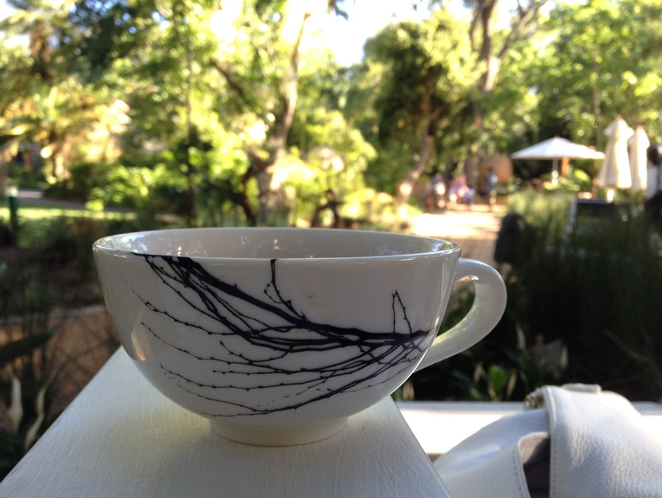 Enjoy a cup of Rooibos tea and Malva Pudding in the Company's Garden Cape Town  South Africa