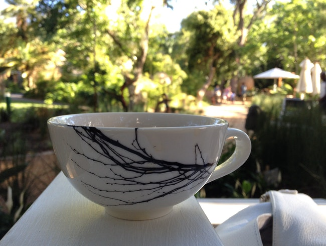 Enjoy a cup of Rooibos tea and Malva Pudding in the Company's Garden