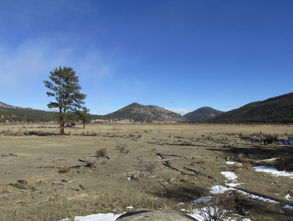 Barren meadow on the way to Cub Lake Trail Estes Park Colorado United States
