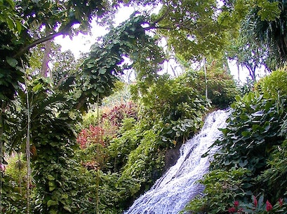 Shaw Park Garden & Waterfall Saint Ann Parish  Jamaica
