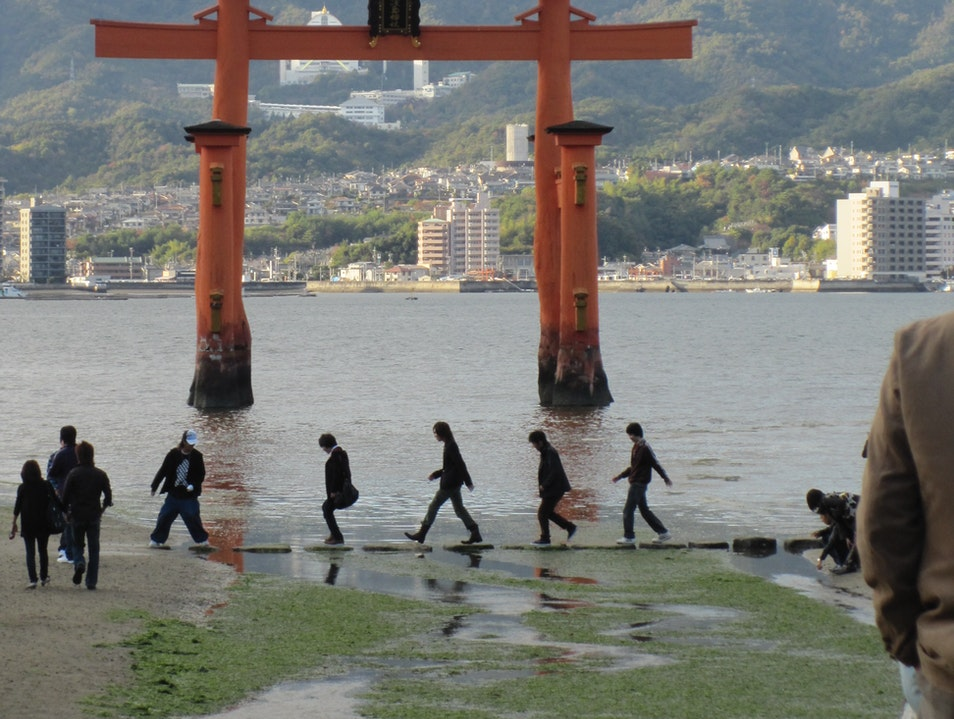 Floating Torii ( gates)
