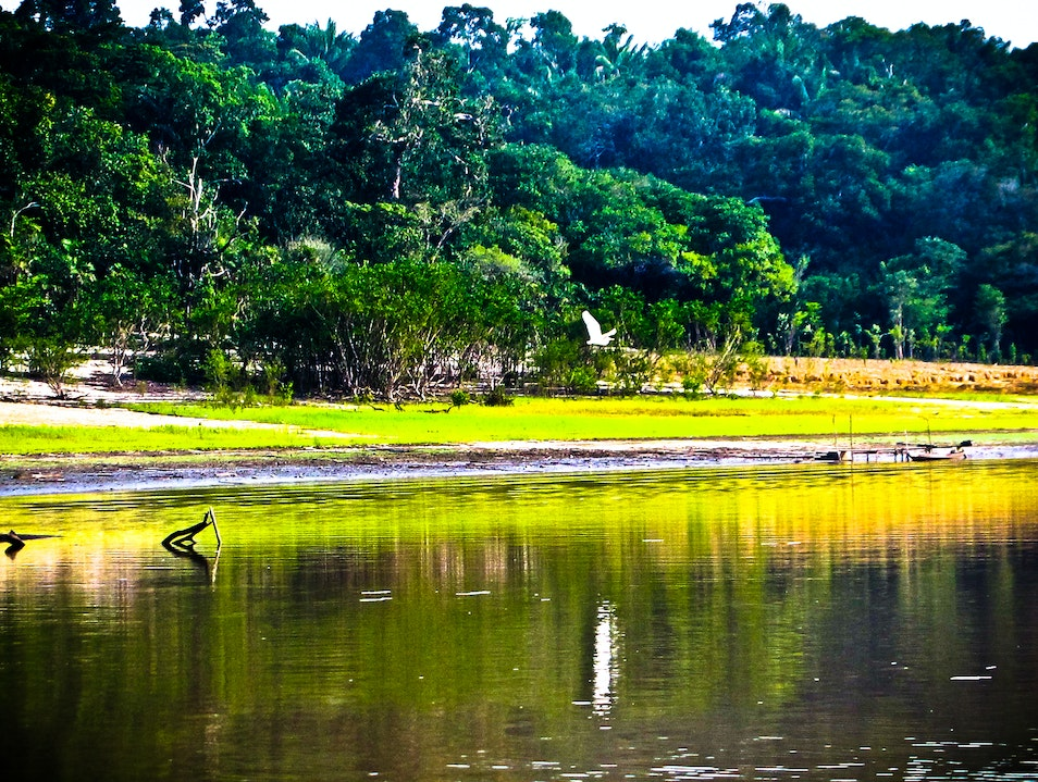 The Amazon's low season - Amazon, Brazil   Brazil