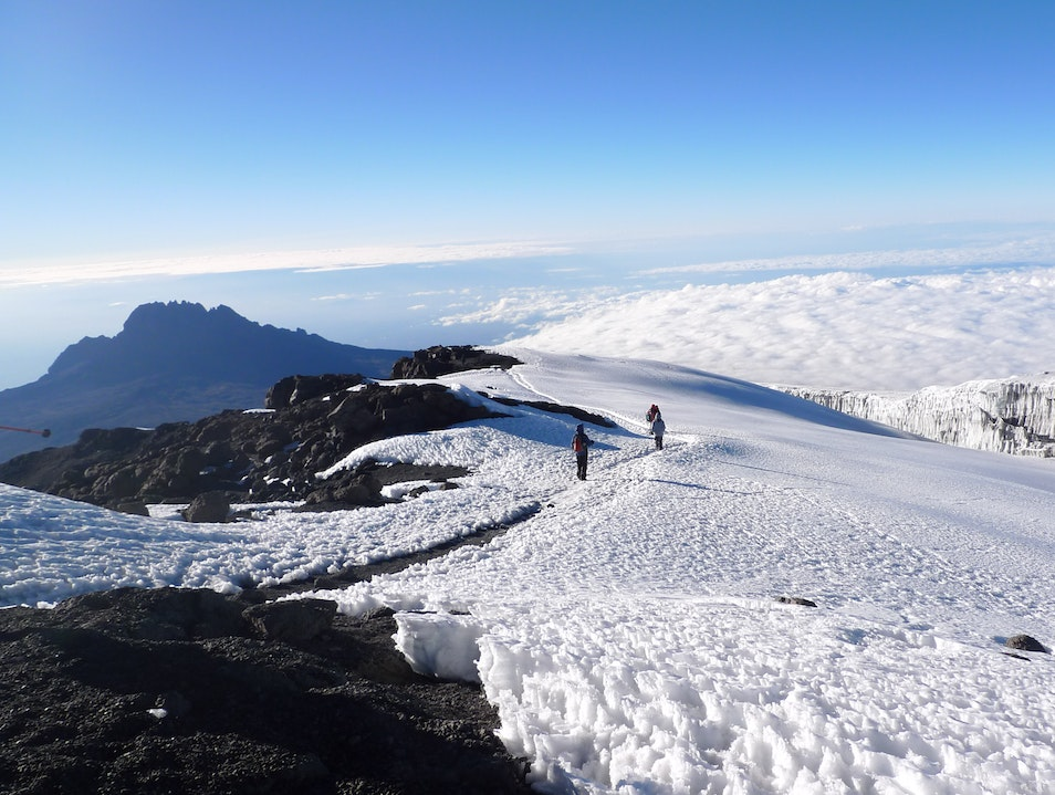Patiently Waiting for Kilimanjaro