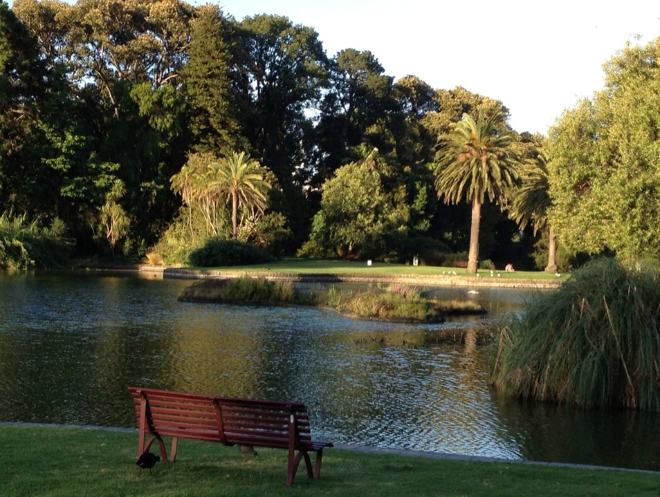 Great Place for a Picnic  Melbourne  Australia