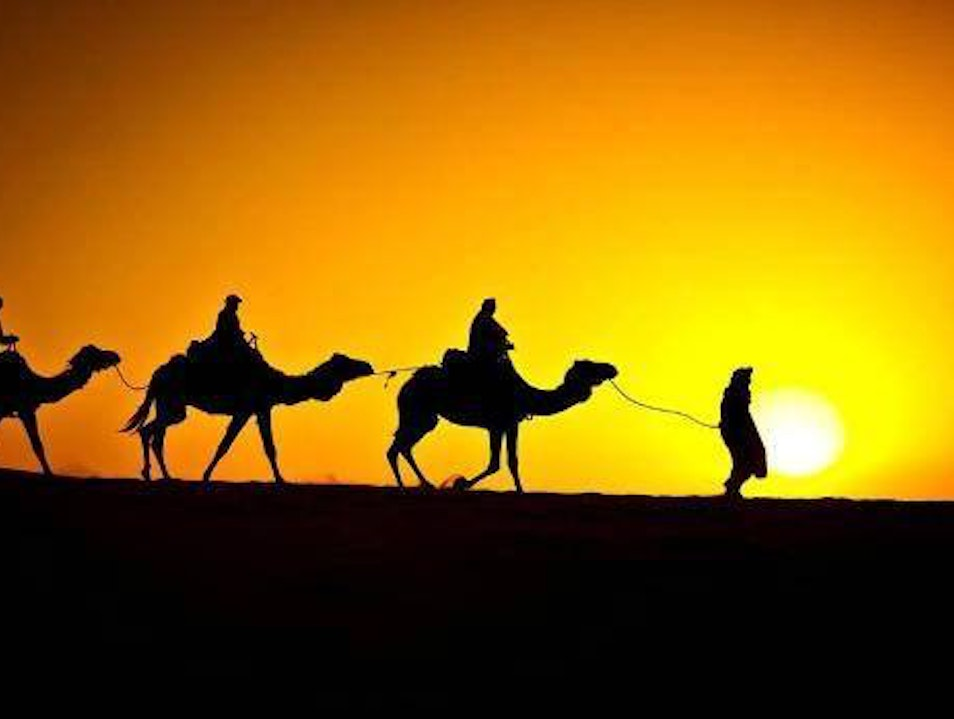 Camel Trekking Tours from Fes