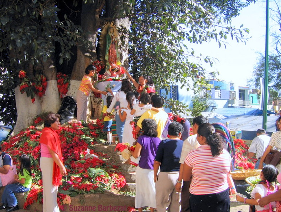 Celebrating the Virgin of Guadalupe Oaxaca  Mexico