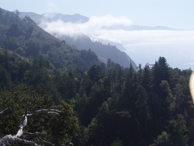 Overlooking the ocean at Nepenthe, Big Sur, California.