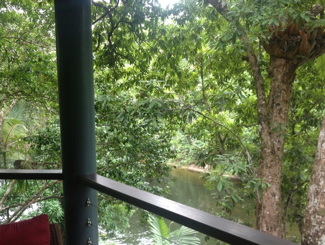 Treehouse Restaurant from inside