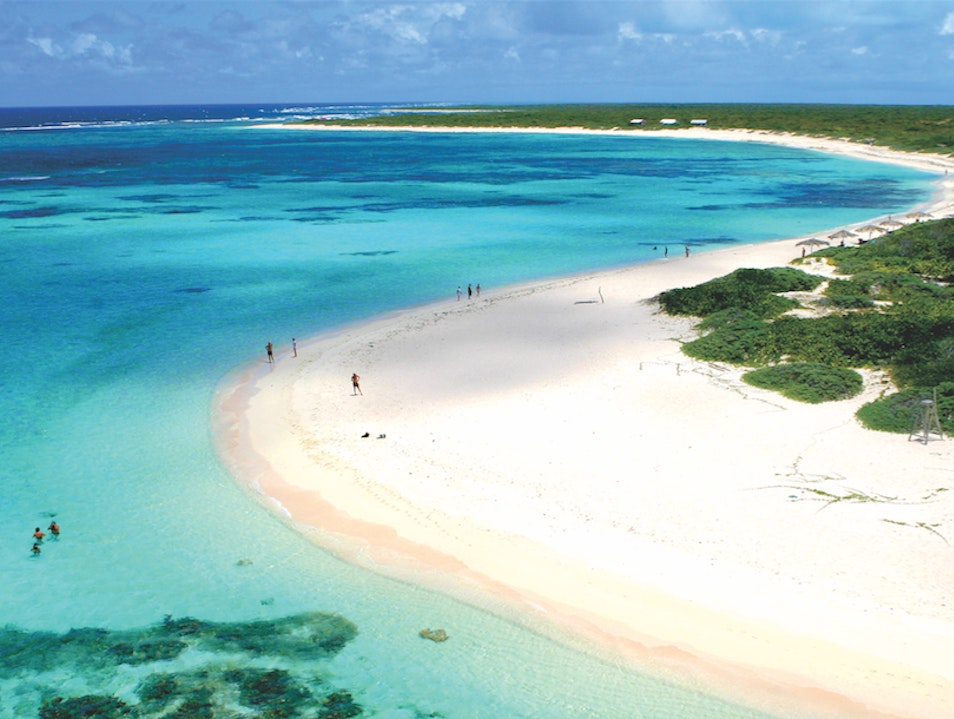 Spend the Day at Loblolly Beach Anegada  British Virgin Islands
