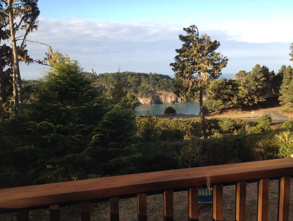 An Osprey's View Mendocino California United States