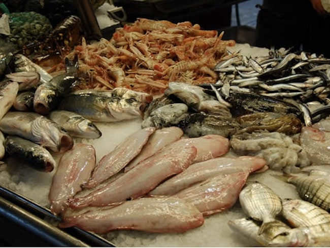 Some of the Best Authentic Seafood in Venice