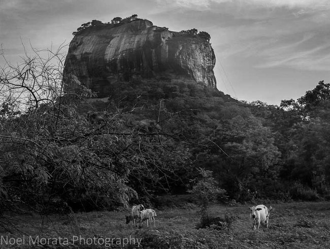 The Lion Rock at Sigiriya