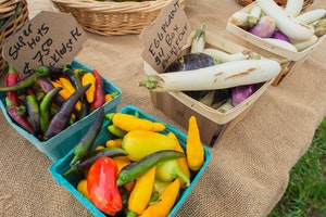 Lake Mary Farmer's Market