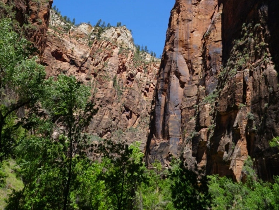 Hiking Zion National Park Springdale Utah United States
