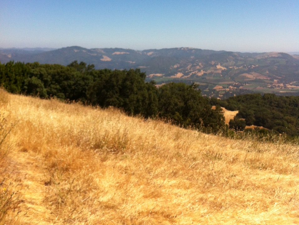 On Top of Sonoma Mountain Glen Ellen California United States