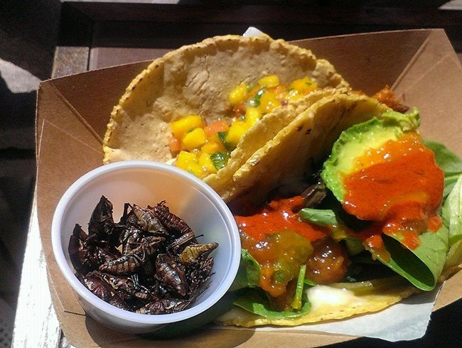Handmade tortillas and a side of crickets