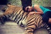 Spooning with a Tiger!  Mae Rim  Thailand