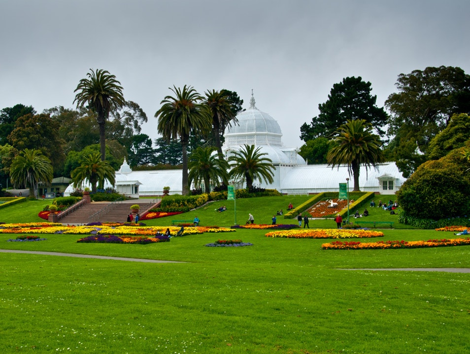 Spend an Afternoon in Golden Gate Park San Francisco California United States