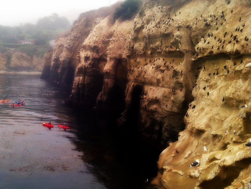 Kayaking not to be missed! San Diego California United States