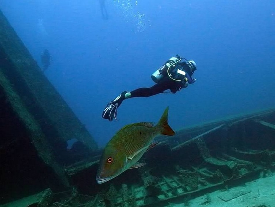 Diving at The Odyssey Wreck, Roatan Sandy Bay  Honduras
