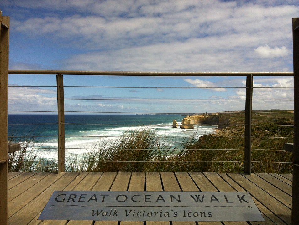 Walk, Don't Drive, to the 12 Apostles Wattle Hill  Australia