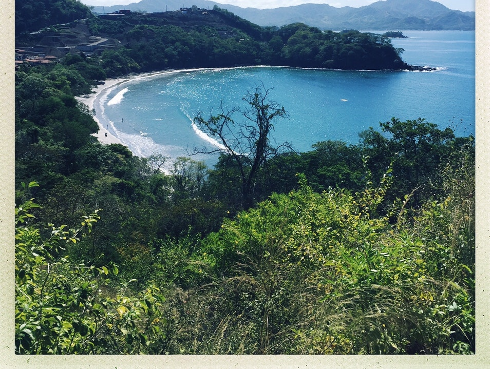 Meet Monkeys, Hike Through Costa Rican Dry Forest at Las Catalinas
