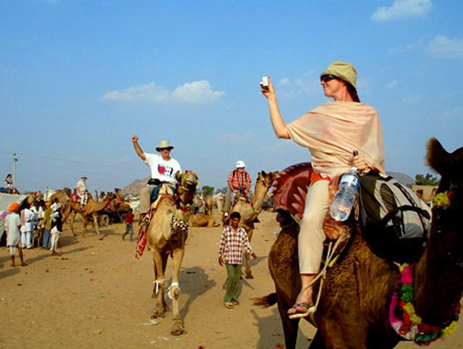 Enjoy Magnificent Pushkar Camel Fair Pushkar  India
