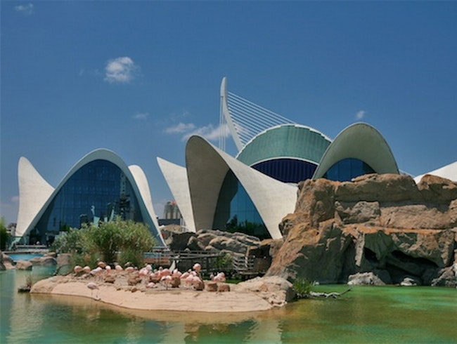 Oceanografic Aquarium, Valencia, Spain