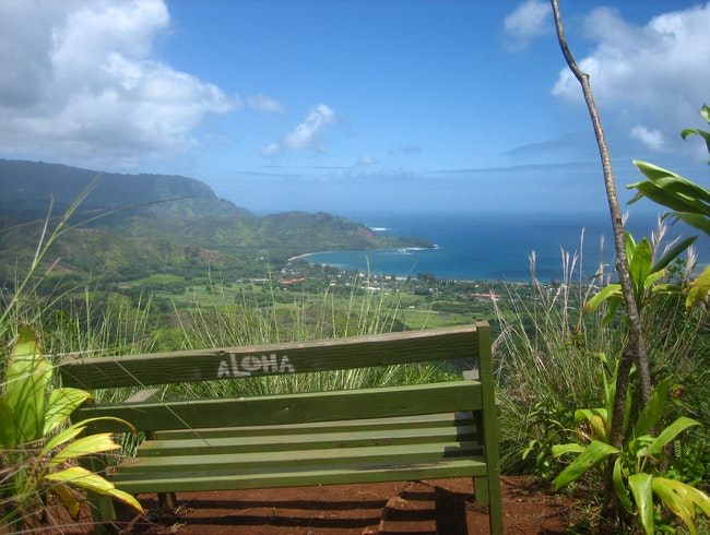Aloha from atop Hanalei