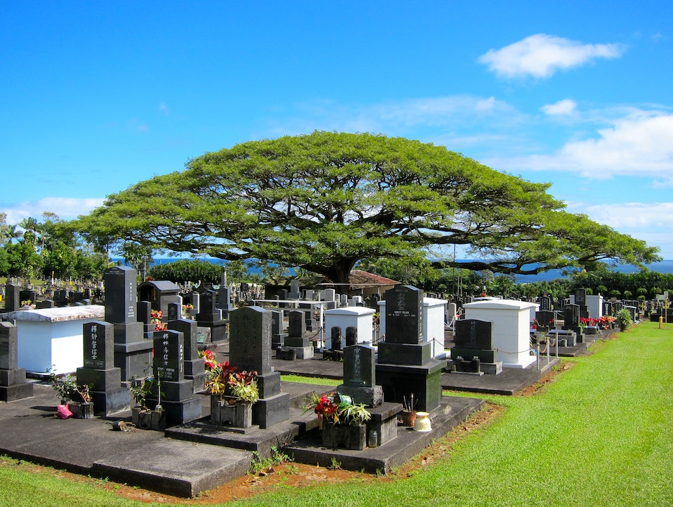 A Tomb with a View Hilo Hawaii United States