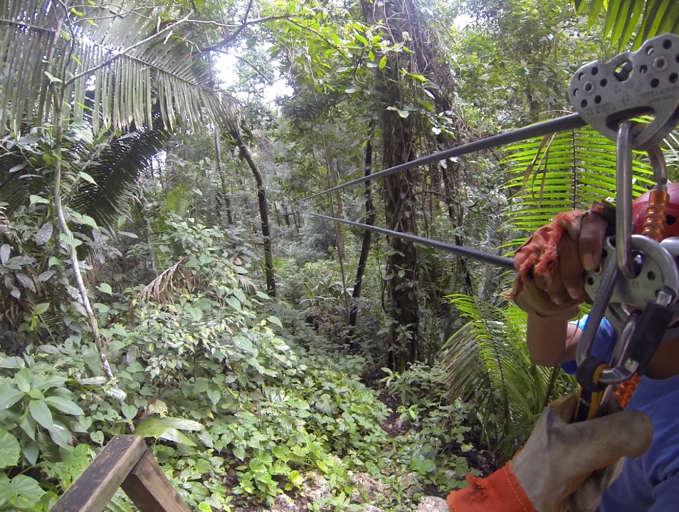 Zip Line Through the Tall Canopies of Belize