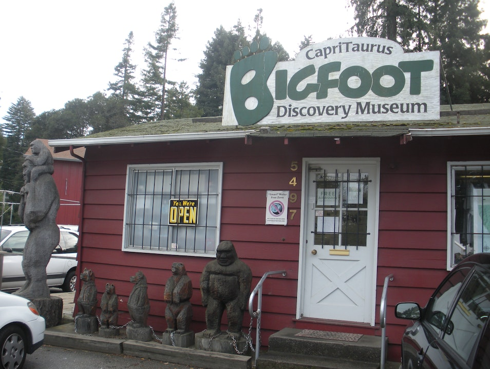 Is Bigfoot running around the mountains of Santa Cruz?