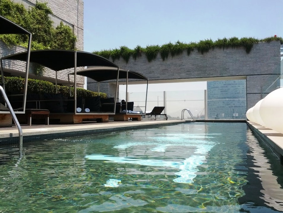 Rooftop Paradise in Sanhattan   Chile