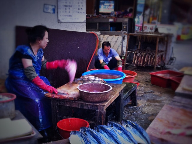 Baseball in the background, mackerel in the foreground: fresh at the market in Sokcho