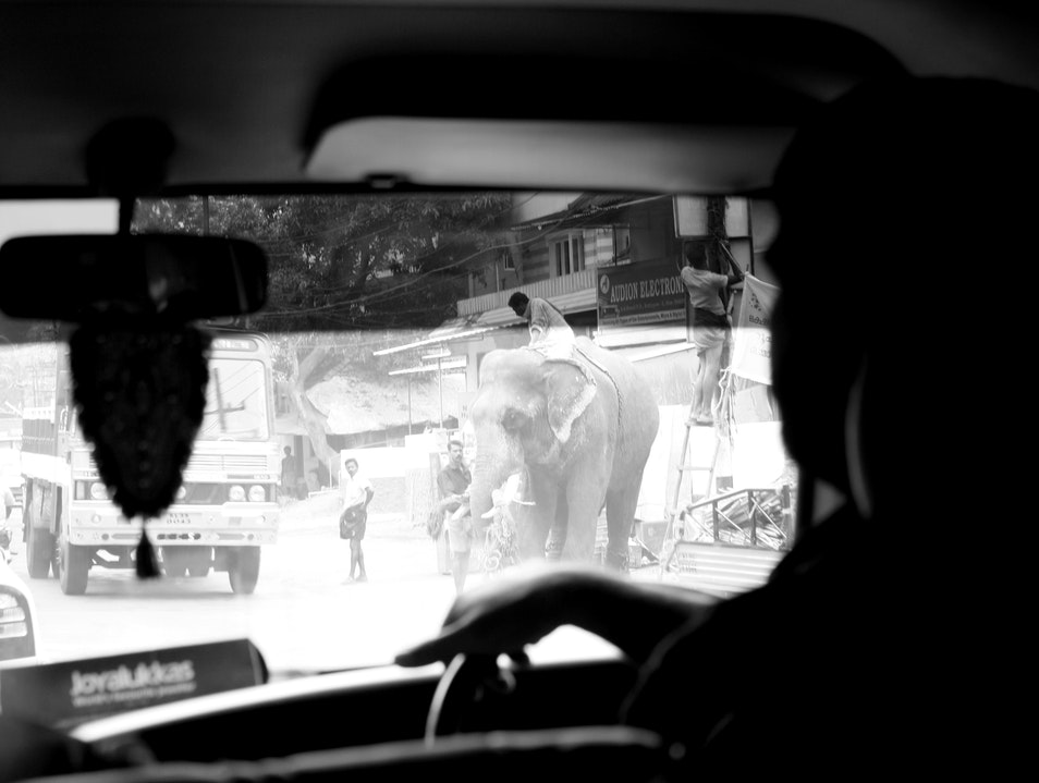 Are We There Yet? Kottayam  India