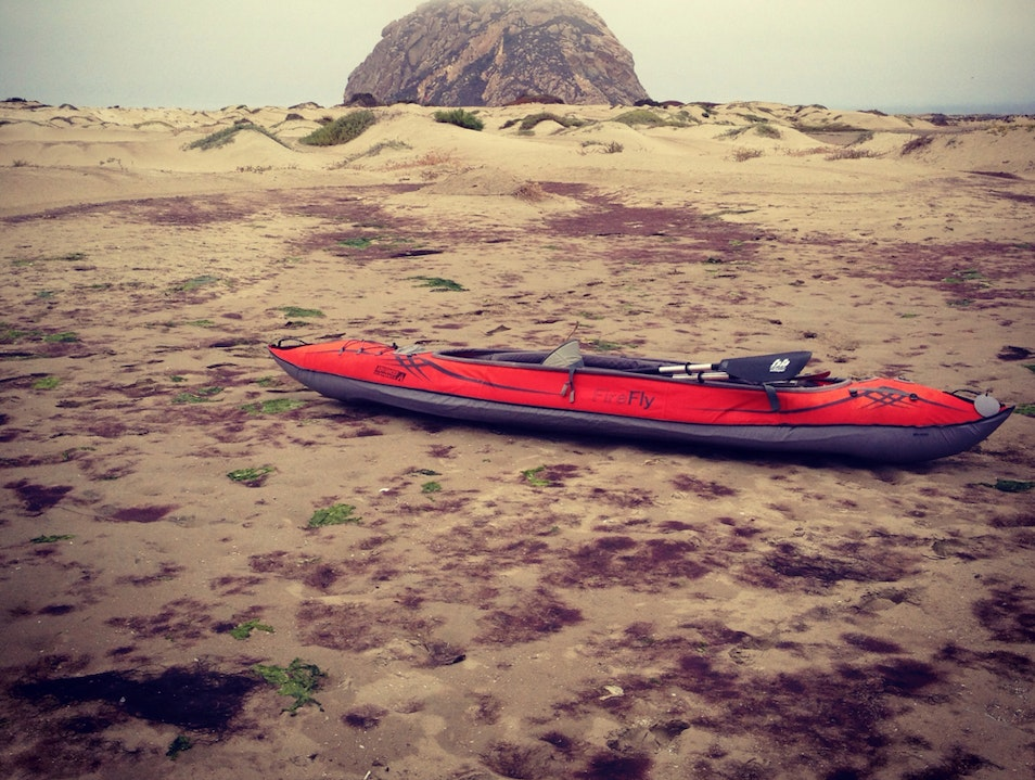 Aquatic Adventures In A Sweet Coastal Town Morro Bay California United States