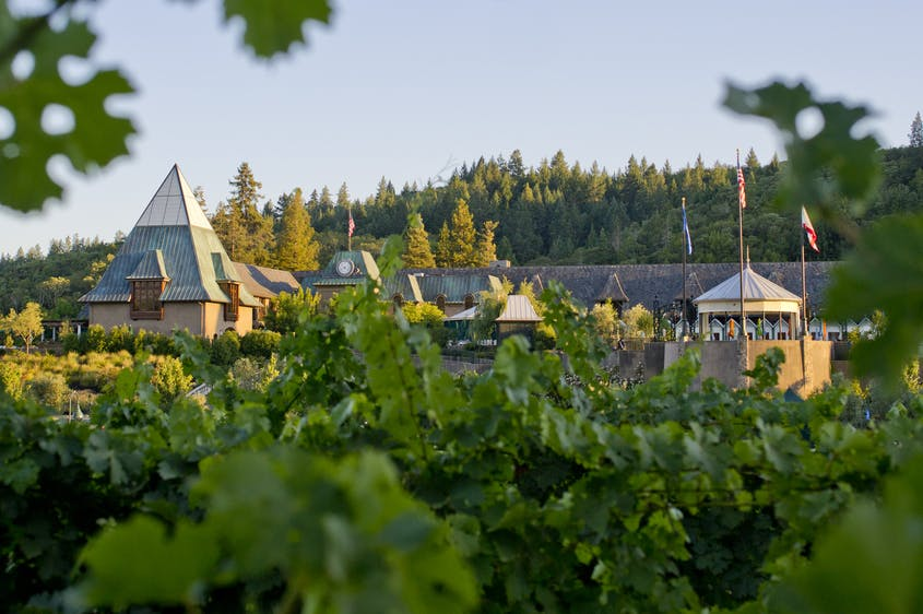 In addition to its wine, Francis Ford Coppola Winery offers a full-service restaurant and movie gallery.