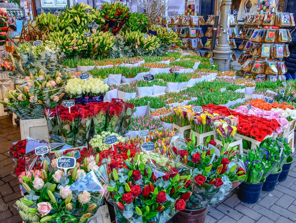 At the flower market