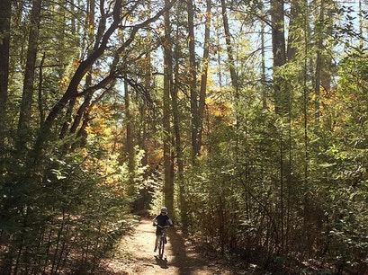 Las Posadas State Forest Angwin California United States