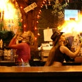 Coyote Ugly Key West Florida United States