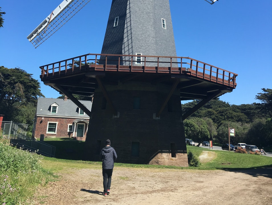 Murphy Windmill San Francisco California United States