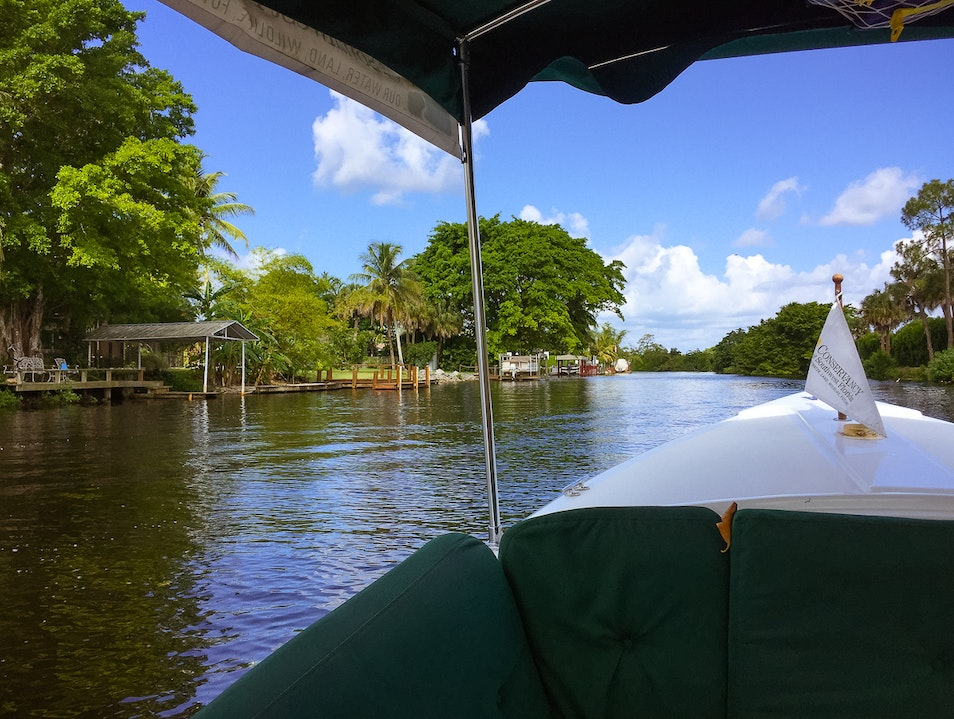 Take a Conservation Nature Tour by Boat